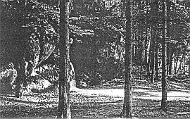 "Abb. 8: Felsengrotte ""Doktors Loch"" in der Kaiserei"